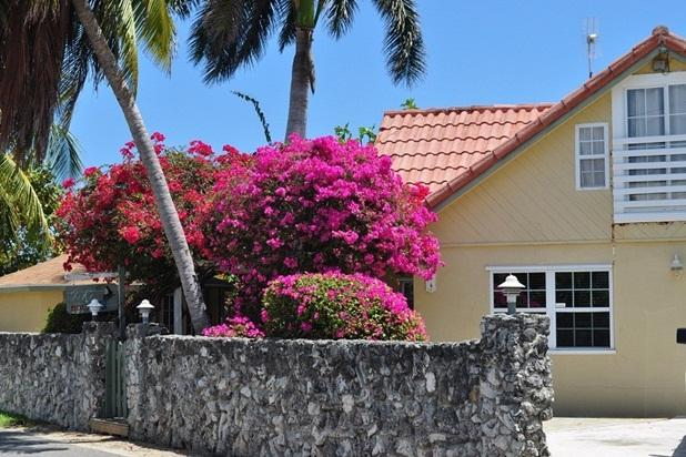 Private Villa Set Behind Coral Wall, Ocean Views - Image 1 - Grand Cayman - rentals