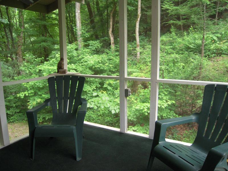 Large screened porch by the creek. Enjoy the creek year round - Clearfork Farm on a year round creek Free Wi-Fi - Pigeon Forge - rentals