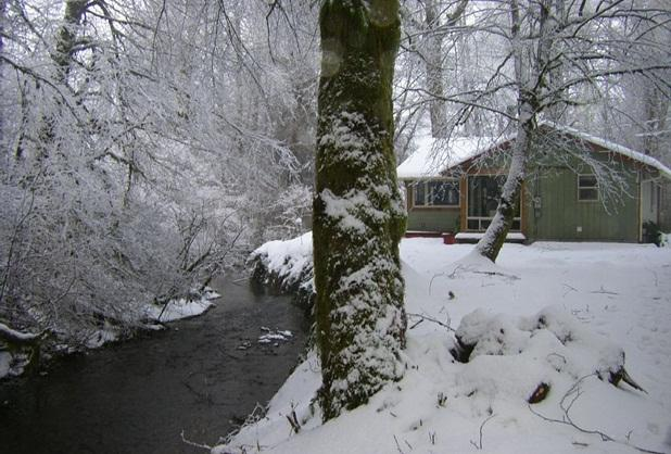 Tassel Creek in the winter! - Todds Creekside Cabin, Olympic National Park - Forks - rentals