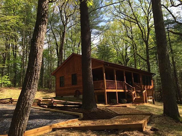 Spectacular 1 Bedroom Cabin Nestled in the Pines w/ Hot Tub - Image 1 - Rileyville - rentals