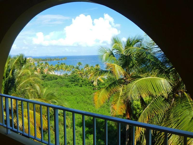Hilltop View of Caribbean and Rain Forest - Image 1 - Humacao - rentals