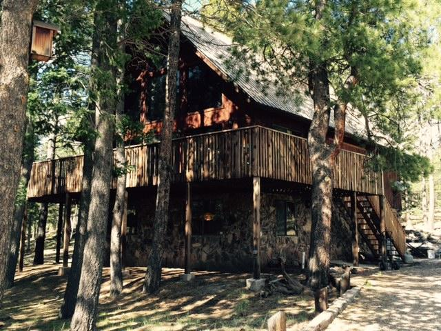38 Saints Terrace - Spacious and Comfy Angel Fire Ski House - Angel Fire - rentals