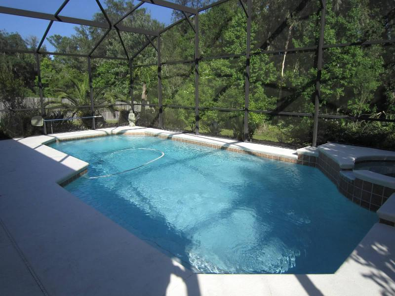 Recommended Villa with Free Solar Pool He - Image 1 - Kissimmee - rentals