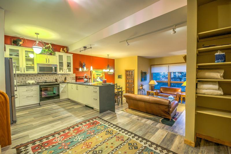 Steps to Slopes, Beautiful Modern Home - Image 1 - Steamboat Springs - rentals