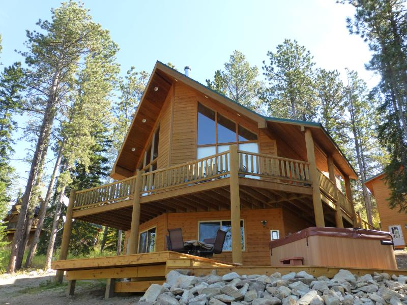 Sasquatch Lodge - Family cabin in the Black Hills! - Image 1 - Lead - rentals