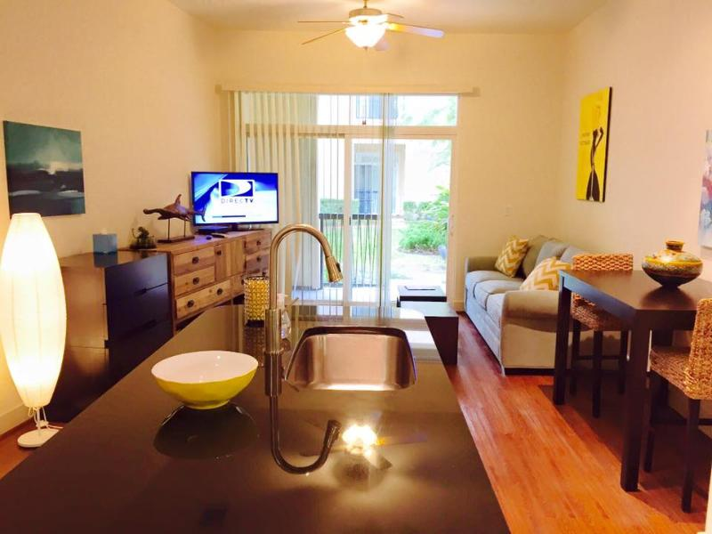Limon Lounge - Retreat - Shopping   Restaurants! - Houston - rentals