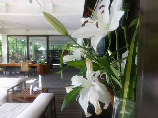 Thouzen Acre Oasis,Tao - Luxurious 2 Bedroom Condo - Image 1 - Chacalal - rentals