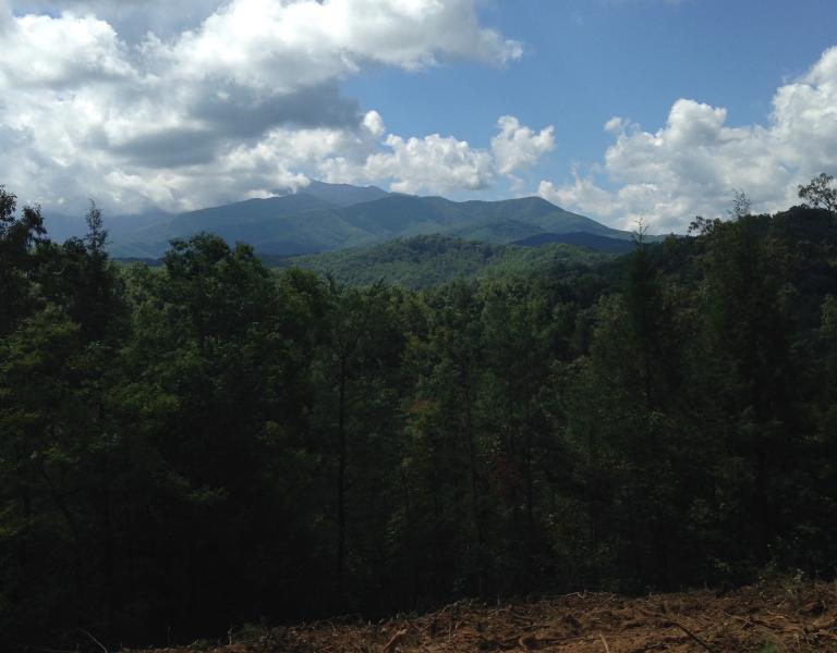 View from construction site for new cabin - Foxwood Mansion - Gatlinburg - rentals
