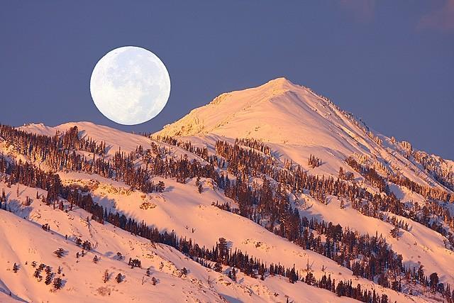 Luxury Ski Condo by Snowbasin - Image 1 - Huntsville - rentals