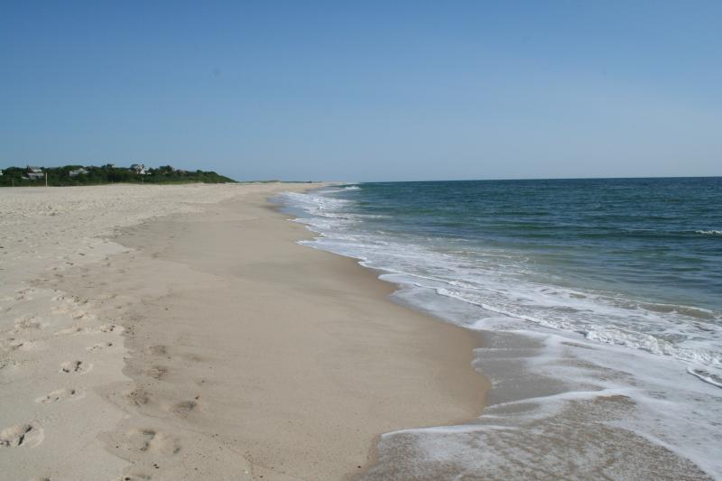 Experience Cape Cod on the 15 mile long Nauset Beach - Stunning Ocean Front Luxury Home - East Orleans - rentals