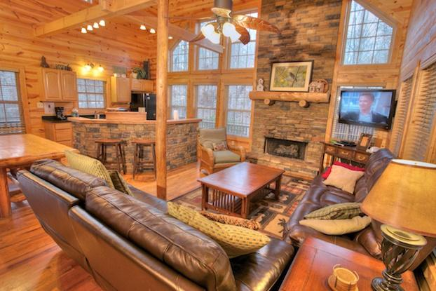 Cozy Living Space - Bobcat Lodge - Helen - rentals