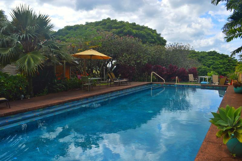 Pool - The Banyan Bed and Breakfast Retreat in Maui, HI - Makawao - rentals