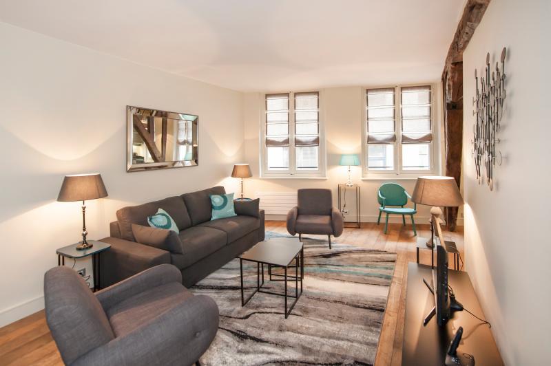 Living room - Last Minute Offer - Cosy 1BD rue Mazarine - Paris - rentals