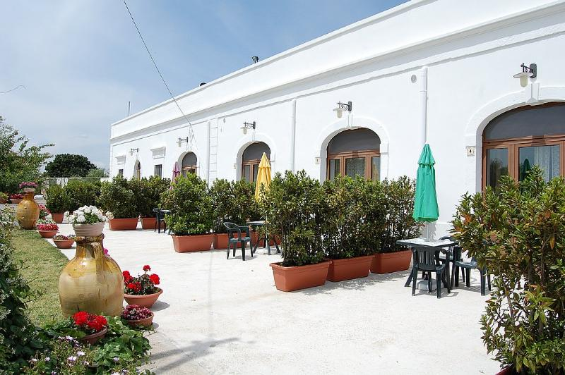 Casa Viola E - Image 1 - Cisternino - rentals