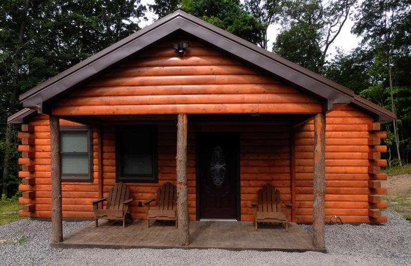 Welcome to your modern, luxurious, comfortable log cabin retreat! - Cayuga Lake Cabin, Cayuga Wine Trail, Finger Lakes - Cayuga Lake - rentals