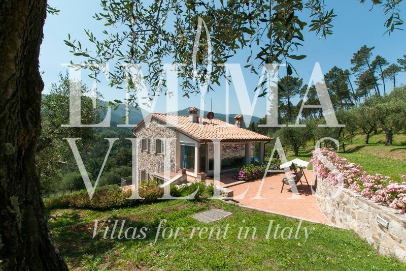 Setteventi 6+1 - Image 1 - Lucca - rentals