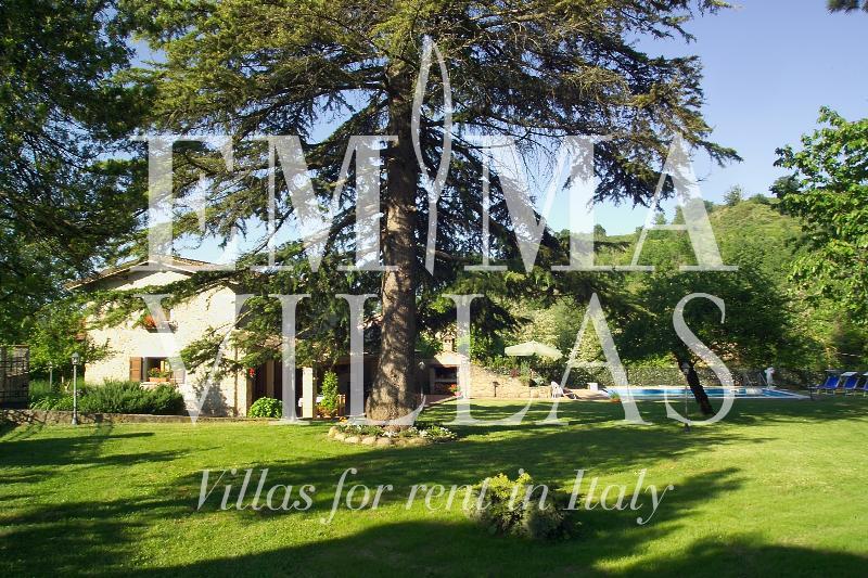 Villa Dafne 6+1 - Image 1 - Forli - rentals