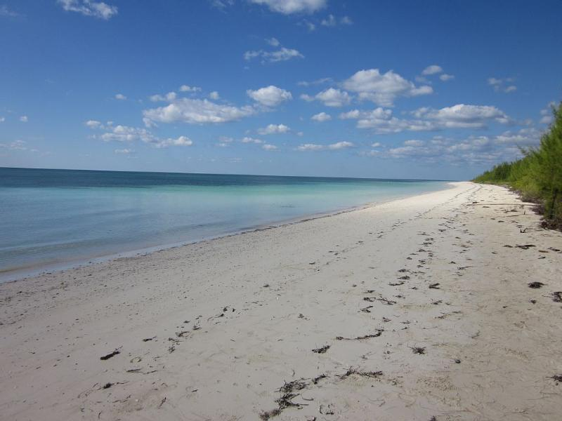 Relax to the sound of the ocean - Image 1 - Freeport - rentals