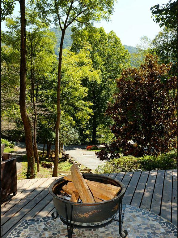 View from front porch - Charming, Roomy & Renovated Bungalow-Hot Tub, Frpl - Asheville - rentals