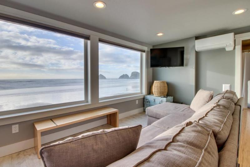 Amazing oceanfront & dog-friendly condo w/ jetted tub & close beach access! - Image 1 - Oceanside - rentals