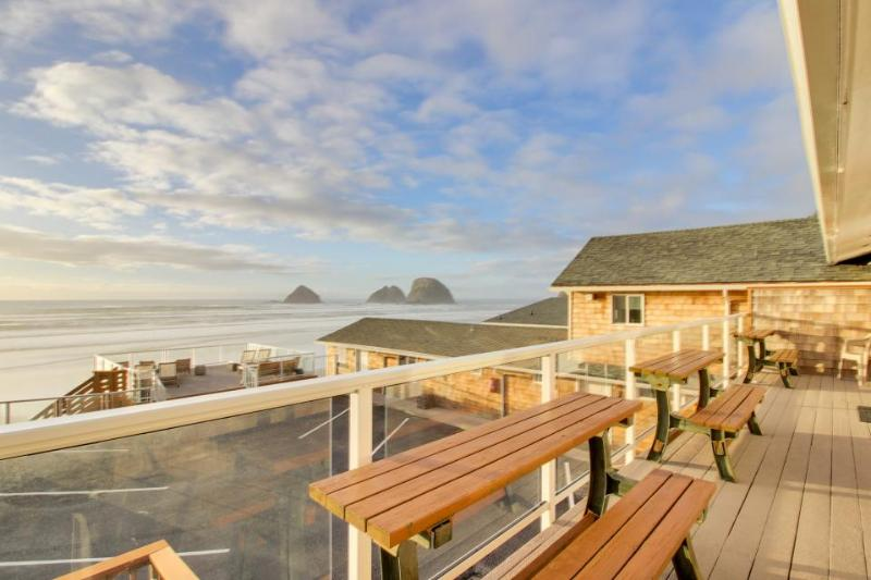 Dog-friendly, completely remodeled modern home with beachfront views! - Image 1 - Oceanside - rentals