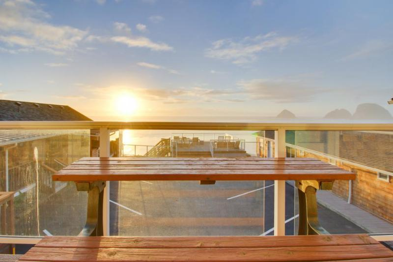 Lovely, oceanfront condo w/ ocean views & easy beach access - dogs welcome! - Image 1 - Oceanside - rentals