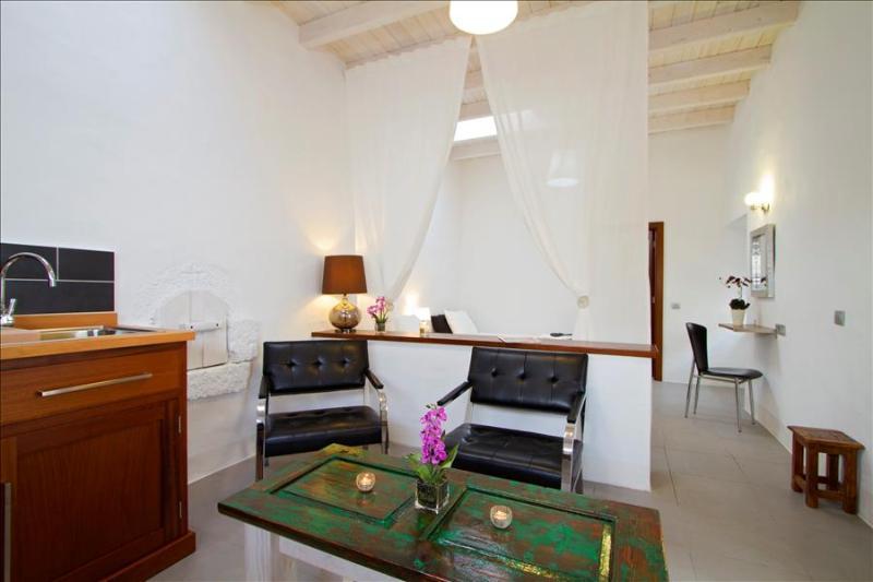 Studio LVC206330 - Image 1 - Tiagua - rentals