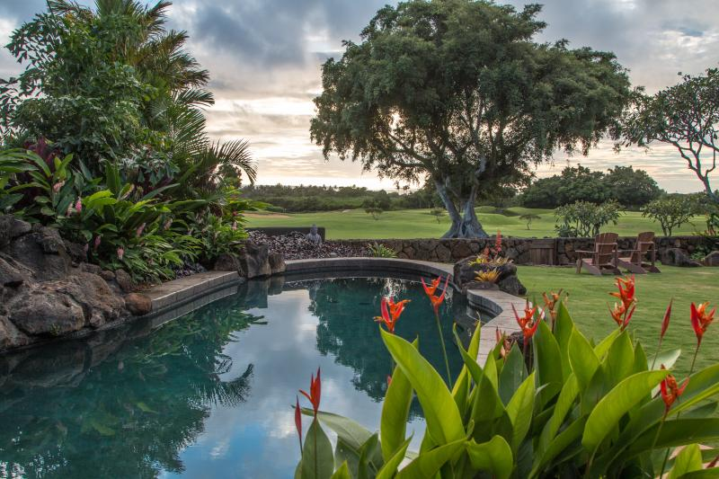 New Private Ocean View Lagoon Pool large enough to do some serious swimming! Giant Waterfall! - Ocean & Sunset View $349 Special thru June Poipu Home with Private Lagoon Pool - Poipu - rentals
