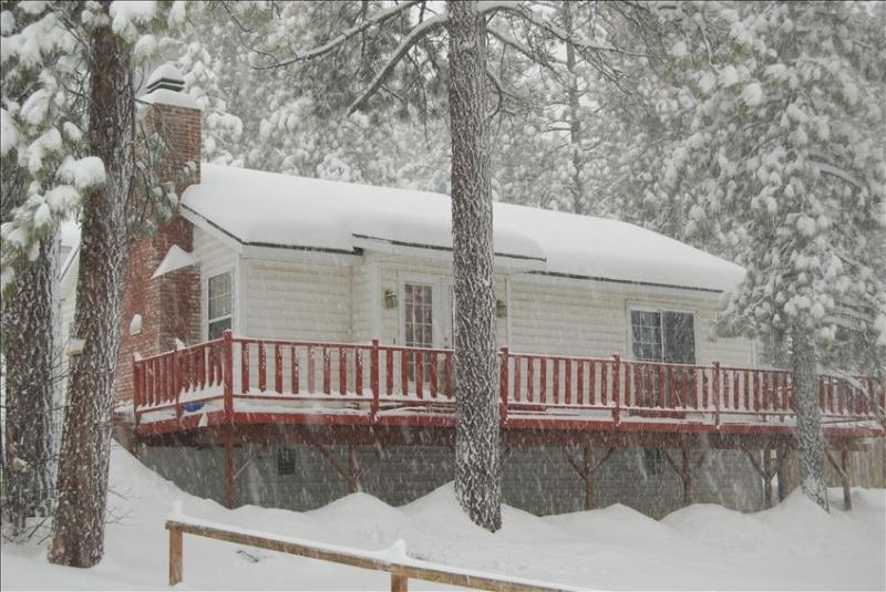 Best Location in Big Bear - Image 1 - Bell Canyon - rentals
