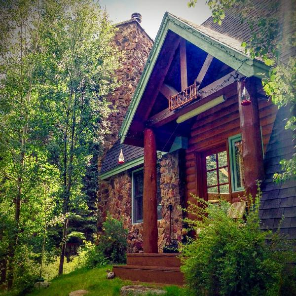 Welcome to Colorado. Welcome to the Cabin. - A River Front Mountain Luxury Cabin - Idaho Springs - rentals