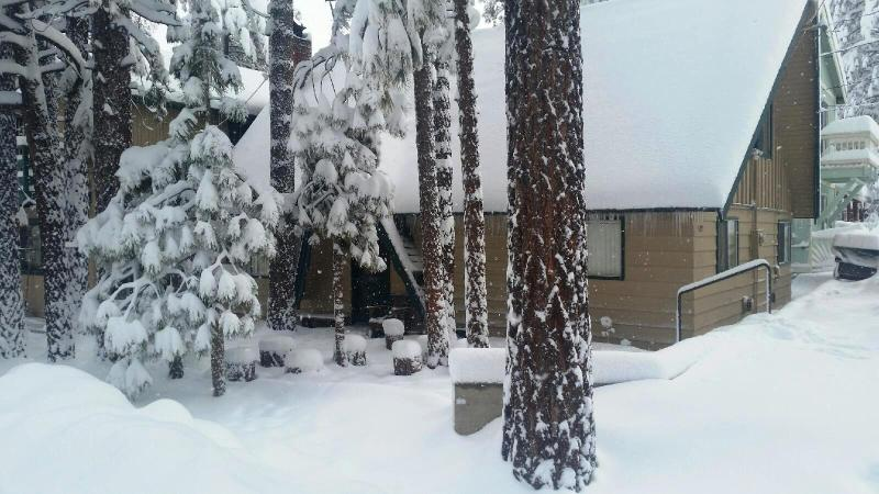 Winter View - Moose Pad, 3 BR, Slps 12, Jacuzzi, Level Parking - Big Bear City - rentals
