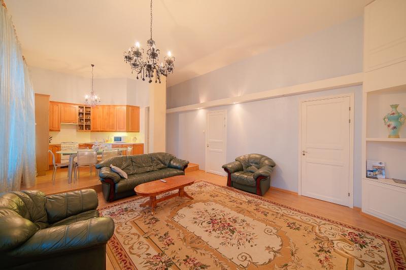 Elite apartment in the very centre - Image 1 - Saint Petersburg - rentals