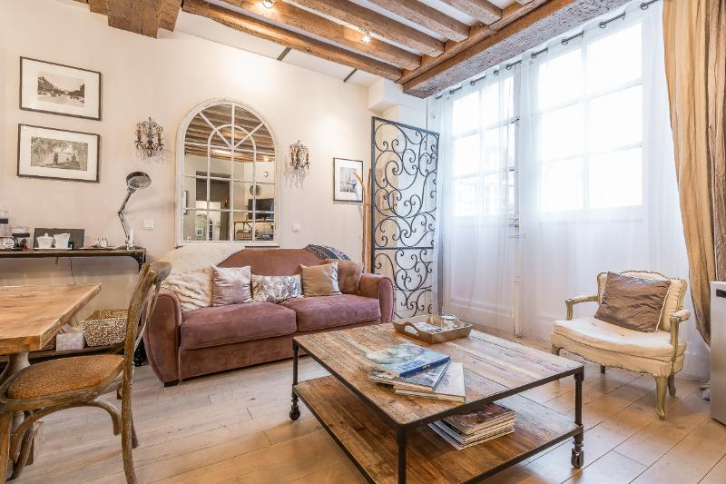 Le Coeur de la Cour - Seen on HouseHunters Intl - Image 1 - Paris - rentals