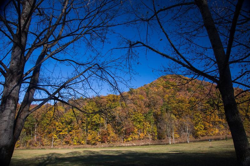 Autumn leaves right from the porch swing - 27 Secluded Riverfront Acres of Mountain Vistas - Elkins - rentals