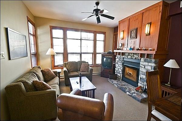 Modern Living Room Features a Cozy Gas Fireplace - Lovely Mountain and Forest Views - Convenient Location & Fantastic Amenities (6164) - Mont Tremblant - rentals