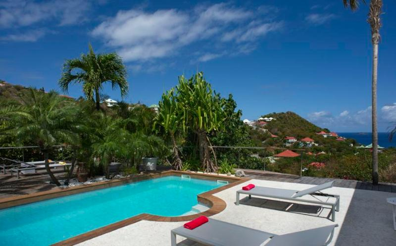 Ylang Ylang - Ideal for Couples and Families, Beautiful Pool and Beach - Image 1 - Saint Barthelemy - rentals