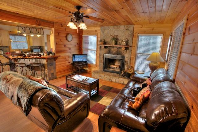 Living Area - Trout Lily - Helen - rentals