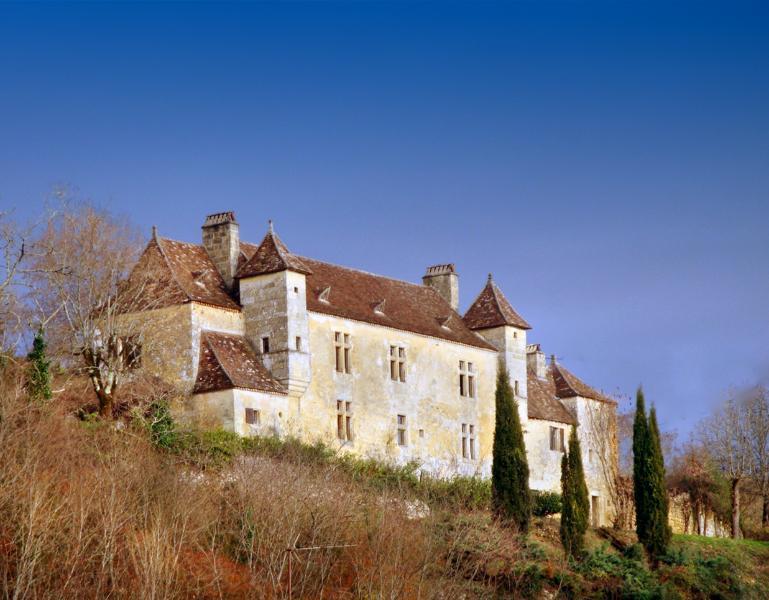 Chateau Rochette - Image 1 - Mauzens-et-Miremont - rentals