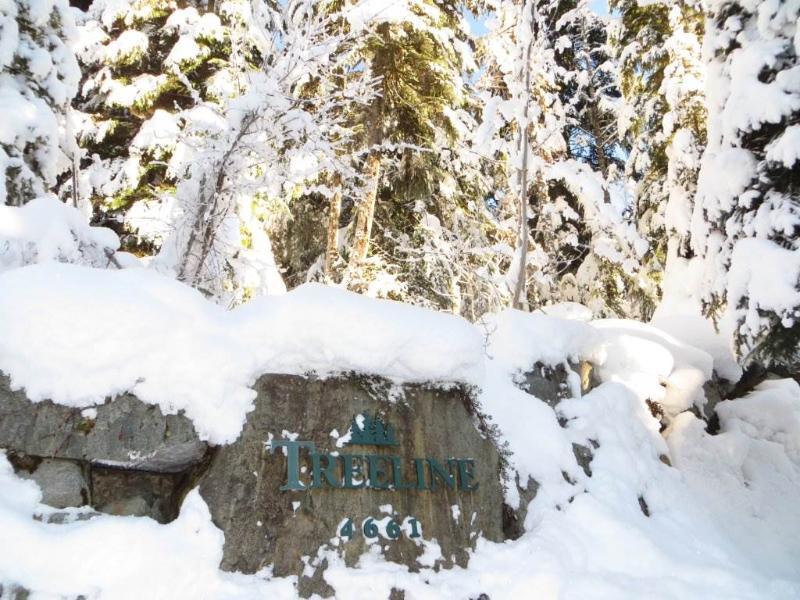 Treeline #27 - Image 1 - Whistler - rentals