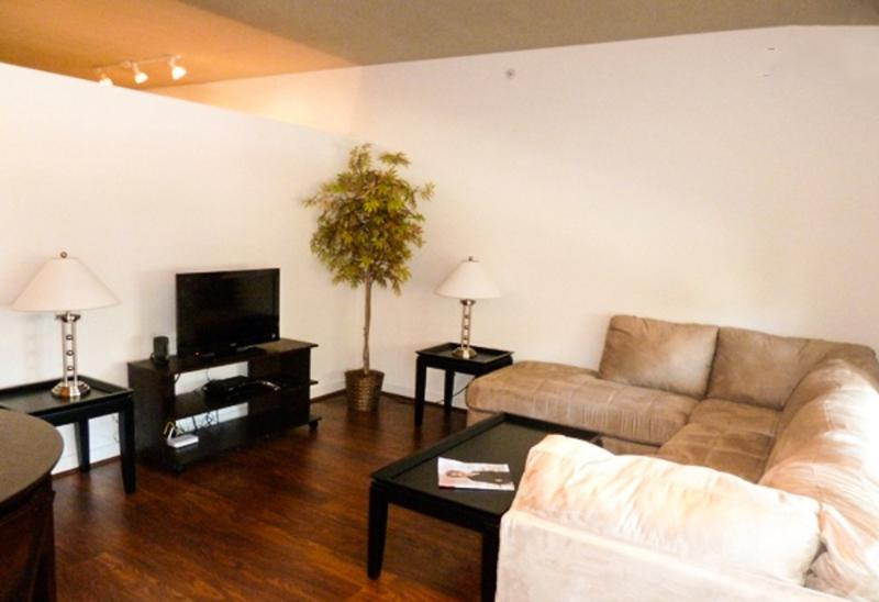 MODERN AND BRIGHT 1 BEDROOM APARTMENT - Image 1 - Washington DC - rentals
