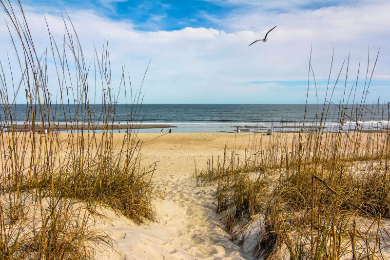 Private beach access - Sea View is at the Beach! - Fernandina Beach - rentals