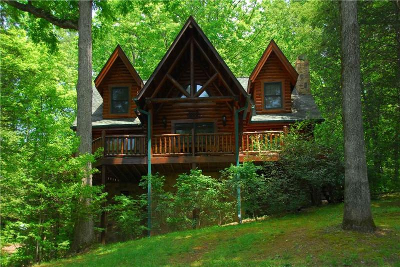 Black Bearry Hill - Image 1 - Sevierville - rentals