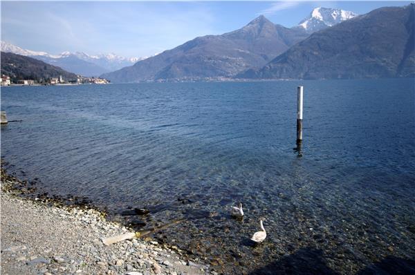 3 bedroom Villa in ACQUASERIA, Lake Como, Italy : ref 2262521 - Image 1 - San Siro - rentals
