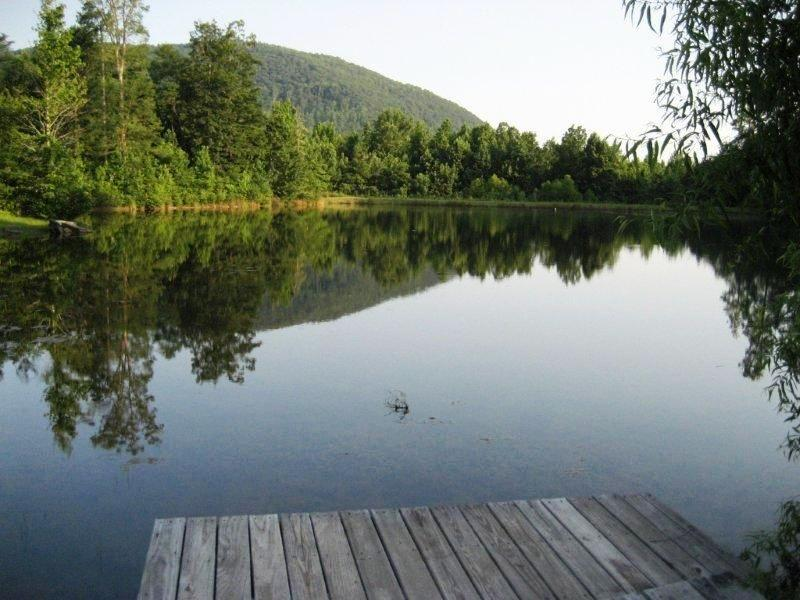 our lake with million dollar views! - Cameron House Retreat-Mt.,Lake,Wine area Paradise - Helen - rentals