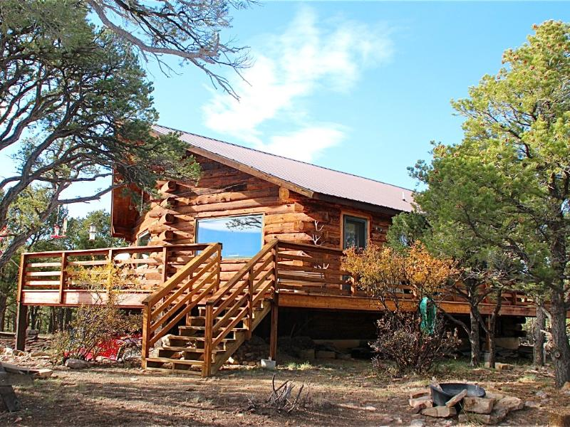 Front/side view of our Log Home - Beautiful Log Home in San Juan Mountains - Ridgway - rentals