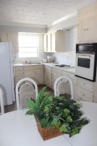 Ocean View Apartment - Image 1 - Daytona Beach Shores - rentals