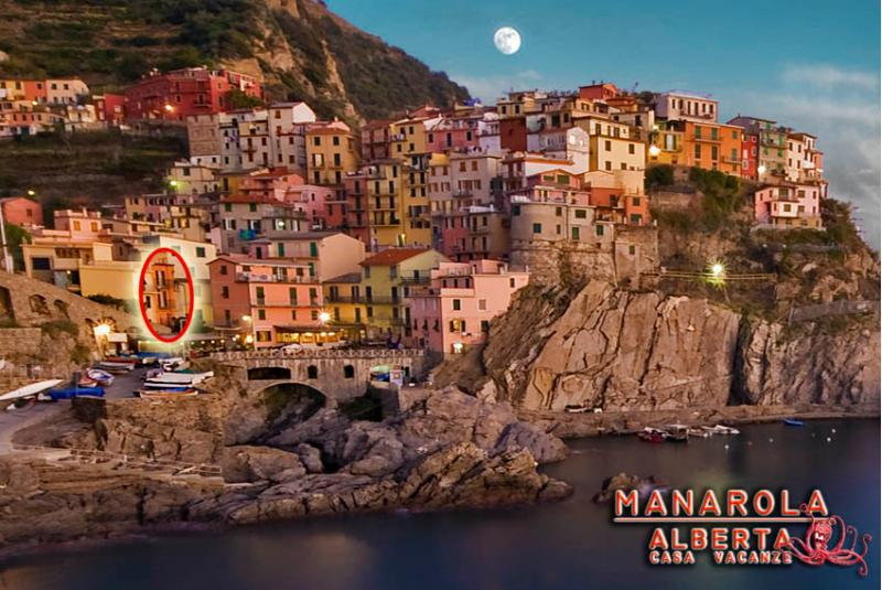 ALBERTA MANAROLA panoramic view, in the circle ALBERTA house - ALBERTA Casa Vacanze - Manarola - rentals