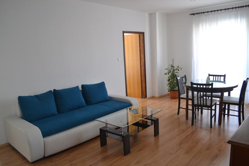 Living room - Fully equipped and very comfortable apartment - Zadar - rentals