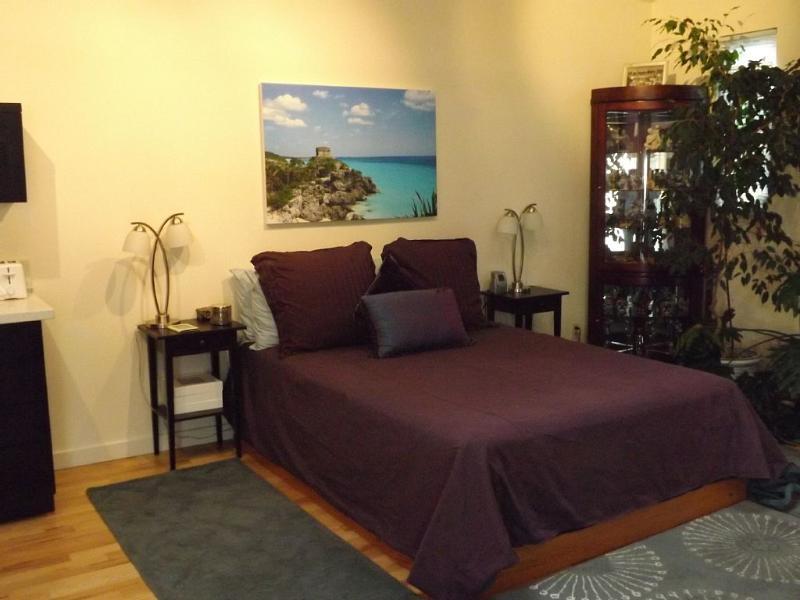 Queen Bed - Spacious Studio in Sonoma wine country - Santa Rosa - rentals