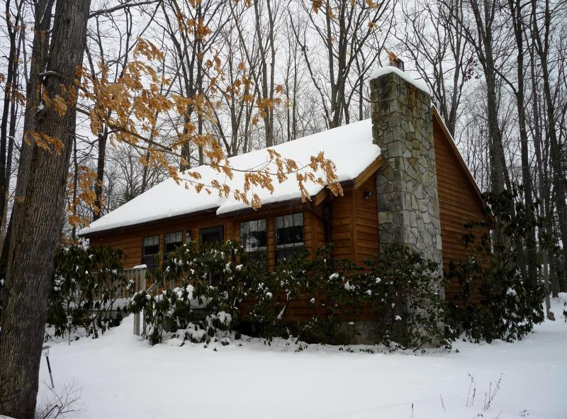 Red Run Cabin in Winter - Red Run Cabin - Oakland - rentals